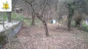 Das selbe Grundstück-Nachher